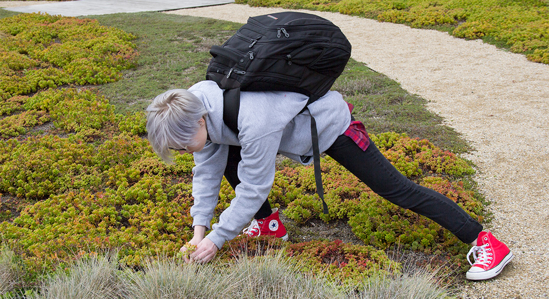 A teen picks a plant from the ground.