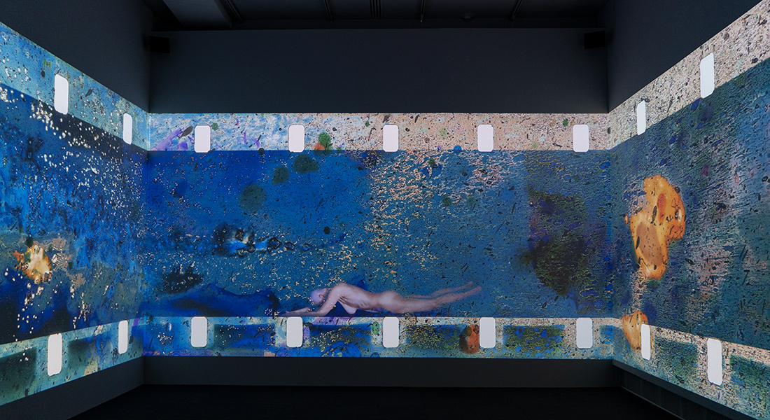 Evidentiary Bodies