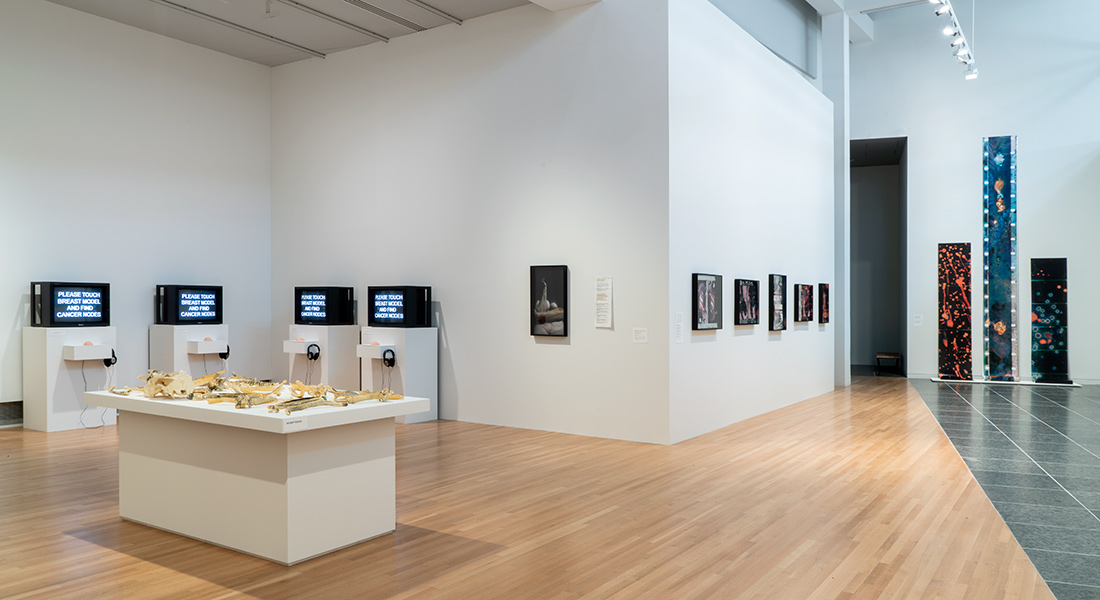 Gallery view of Barbara Hammer installation