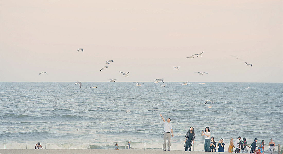 people on the beach with one pointing at birds flying in the sky