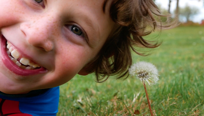 A young white boy in close-up lies in the grass next to a dandelion, staring directly into the camera, in a scene from the short film Blink of an Eye by Ohio State University student Maya Neyman