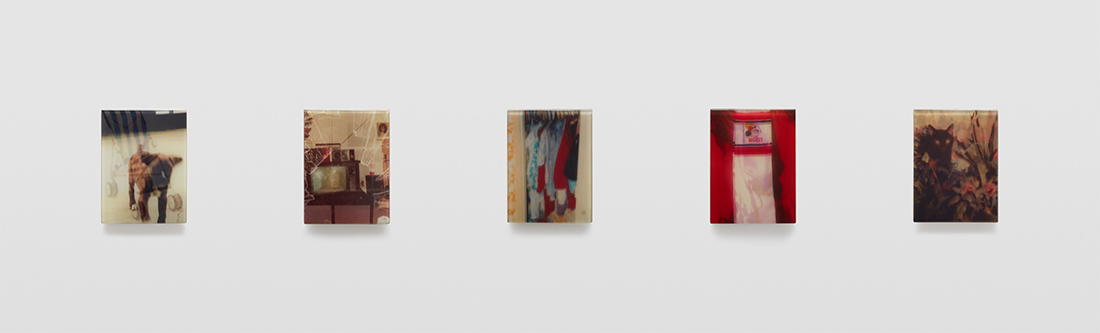 Five discrete mixed media panels that make up sequence two of artist Sadie Benning's Pain Thing