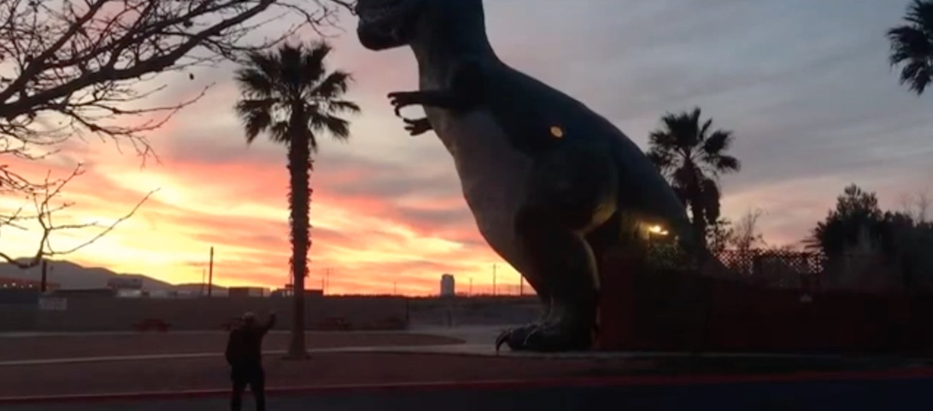 "The back of Wexner Center Assistant Film/Video Curator Chris Stults as he waves goodbye to the setting sun at the California site of the Cabazon dinosaurs, for Layla Muchnik-Benali's video project ""waving goodbye (or hello) to the sun"""