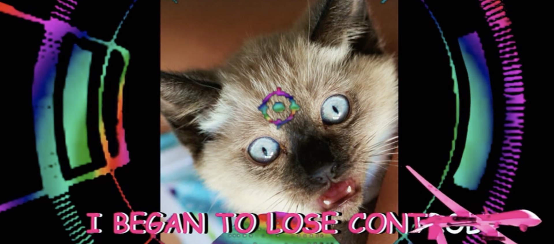 "An altered image of a cat with wide eyes about karaoke lyrics that read ""I began to lose control"" from a work by the art collective Chicks on Speed"